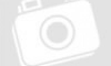 TIẾP CẬN CÔNG NGHỆ THÔNG TIN – CHÌA KHÓA NÂNG CAO CHẤT LƯỢNG GIÁO DỤC VÀ CUỘC SỐNG CHO NGƯỜI KHIẾM THỊ